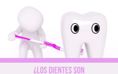 ¿Los dientes son naturalmente blancos?